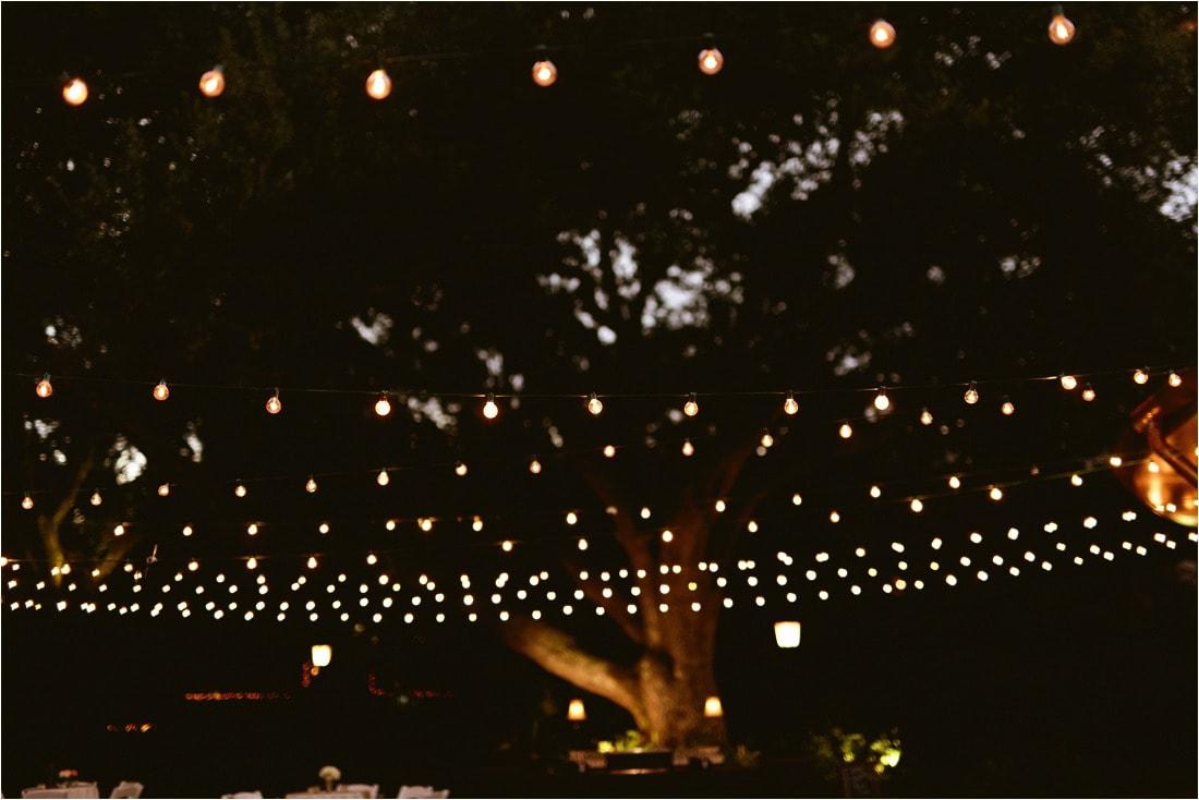 audubonzoo_wedding_hardyeades__537_blogstomped.jpg